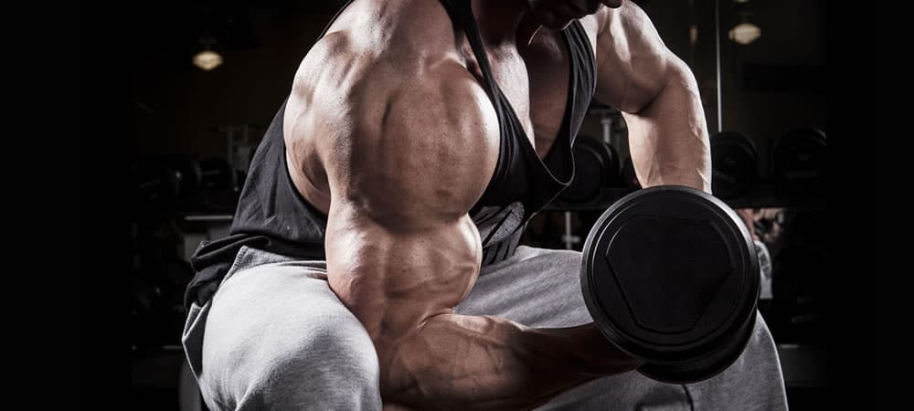 The Right Way To Build Big Arms