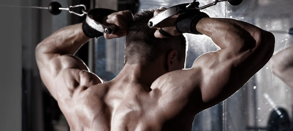 The Best Upper Body Workout For A Big Back And Chest